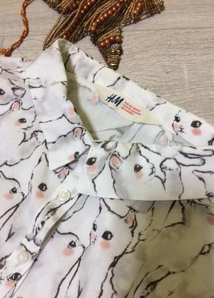 Блуза в котиках/вискоза