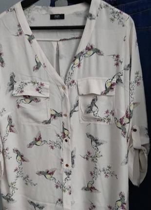 Молочная рубашка с принтом в виде птичек-колибри от f&f