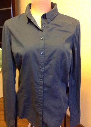 Рубашка/ сорочка / батник женская, коттон  100%, бренд calliope