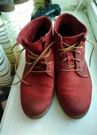 Фирменные кожаные ботинки полусапожки  на танкетке 37 josef seibel новое  состояние!