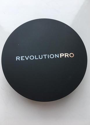 Проф пудра revolution pro