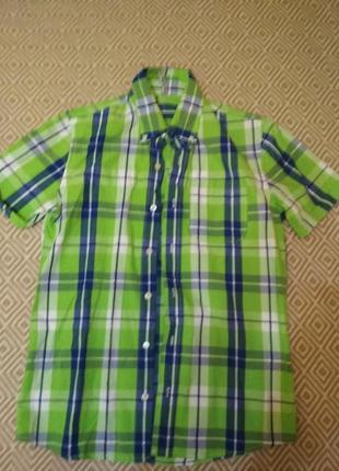 Яскрава сорочка рубашка в клітинку