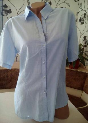 Рубашка от бренда alexandra вторая вещь в профиле скидка 50%