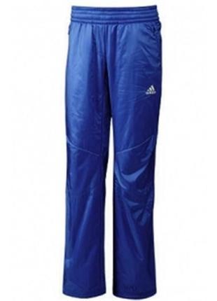 Женские утепленные штаны adidas women hiking windfleece pants оригинал