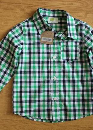 Рубашка фирмы crazy 81 фото