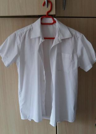 Белая школьная рубашка с коротким рукавом