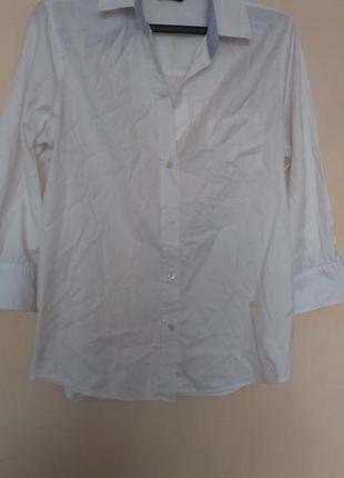 Хлопковая рубашка  massimo dutti