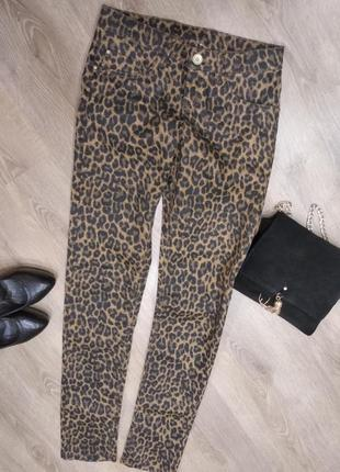Esmara, джинсы с леопардовым принтом