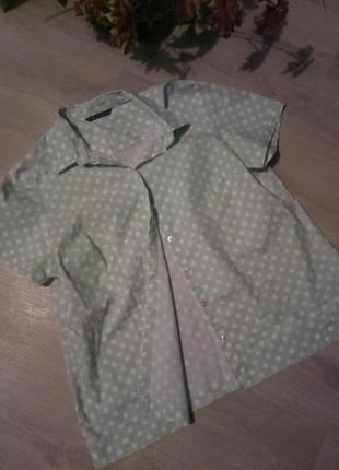 Брендовая рубашка в горох от marks & spencer