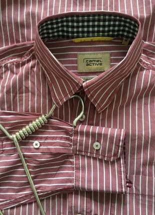 Рубашка базовая в полоску/ 100% хлопок/ c&a