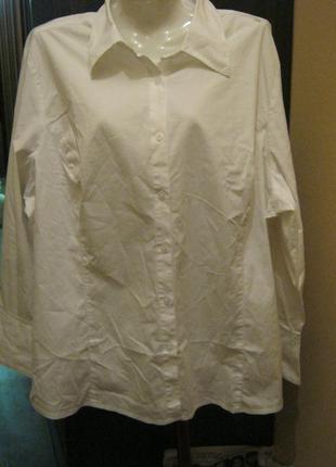 Белая хлопковая блуза большой размер