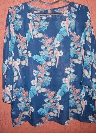 Классная блуза тропические цветы попугай ракушки шифон рукав 3/4