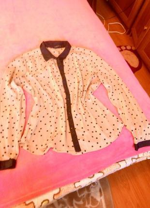 Супер блуза в горох