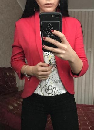 Стильный малиновый пиджак