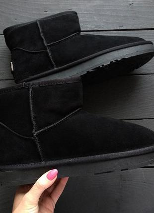 Женские сапоги ботинки ugg australia чёрные низкие замшевые mini