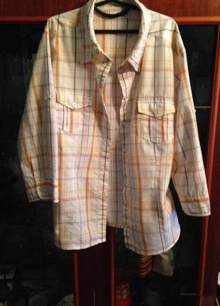 Приталенная рубашка  tom tailor