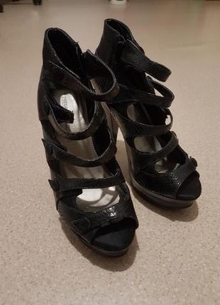 Неповторні туфлі french connection
