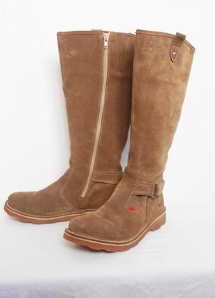 Высокие осенние замшевые кожаные сапоги kickers