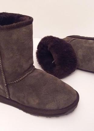 Emu australia®stinger lo! оригинал! угги классические роскошный шоколадный цвет