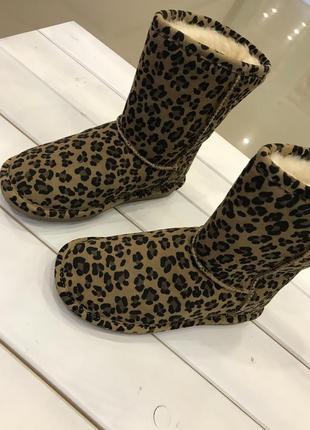 Угги леопардовые замшевые bearpaw 6
