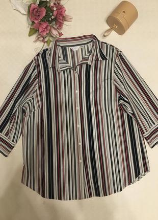 Блуза 20-4хл-22