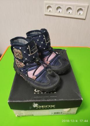 Сапоги термо ботинки geox на высокий подьем