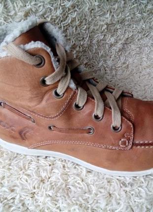 Модні зимові черевики