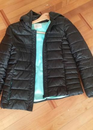 Куртка zara  вьетнам
