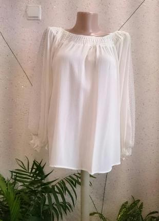 Шикарная блуза с кружевом на рукавах с биркой2