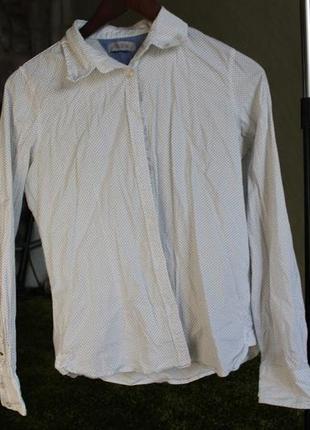 Рубашка в горошок1
