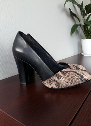 Мега стильные туфли clarcs с англ.сайта натуральная кожа со вставкой змеиной кожи1