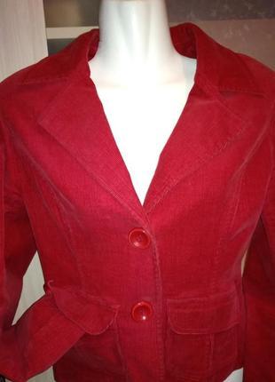 Яркий вельветовый пиджак2