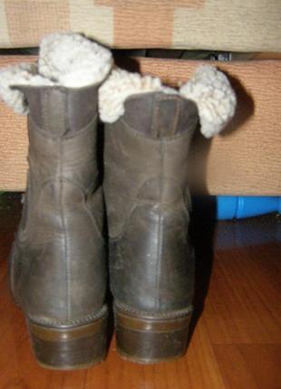 Ботинки сапоги polaris германия 36р., стелька 23см2 фото