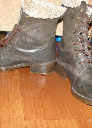 Ботинки сапоги polaris германия 36р., стелька 23см4 фото