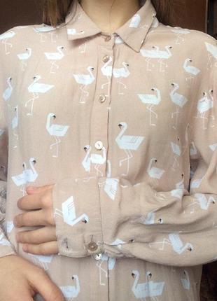 Нежная рубашка asos с интересным принтом3