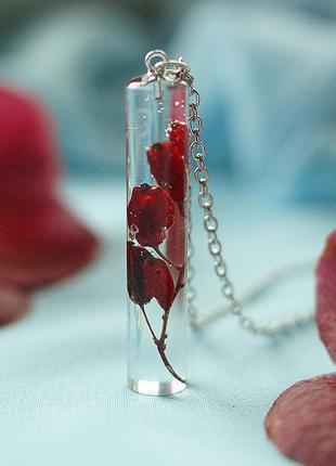 Кулон-кристалл с барбарисом