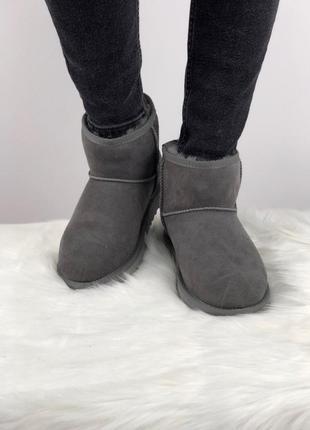 Шикарные женские зимние угги/ сапоги с натуральным мехом ugg classic mini 2 (grey)3