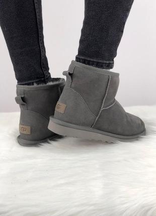 Шикарные женские зимние угги/ сапоги с натуральным мехом ugg classic mini 2 (grey)5
