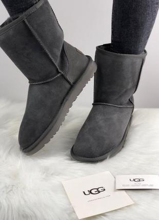 Шикарные женские зимние угги/ сапоги с натуральным мехом ugg classic short 2 boot grey