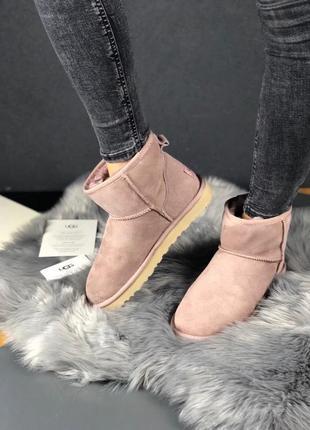 Шикарные женские зимние угги/ сапоги с натуральным мехом ugg classic mini 2 boot full pink