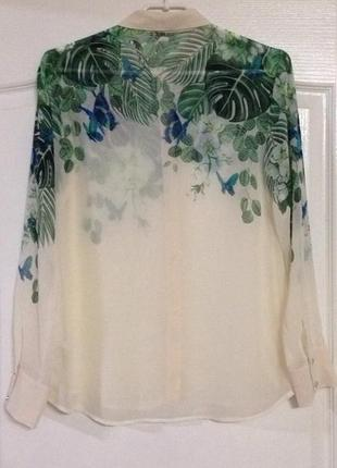 Блузка oasis, новая!3