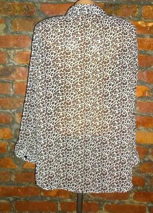 Блуза кофточка большого размера в леопардовый принт2