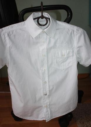 Продам новую белую школьную рубашку с коротким рукавом,   13 лет, рост 158см