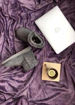 Ugg женские угги classic mini grey 113968