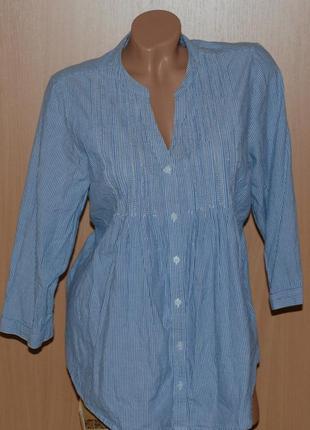 Рубашка/ блуза от debenhams/100%хлопок/  сине-белого цвета/