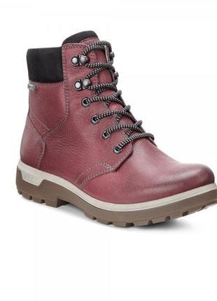 Зимние ботинки ecco gora gtx gore-tex  port/black