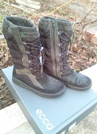 Ecco сапоги зимние кожаные 38р, 24.8см