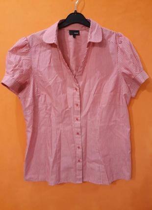 Розовая рубашка next 16
