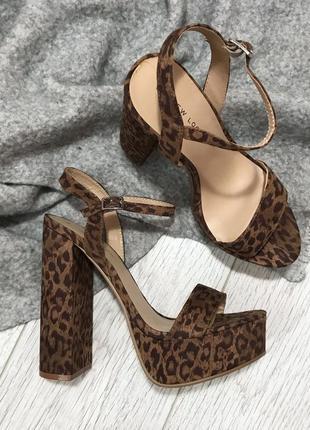 Леопардовые босоножки от new look
