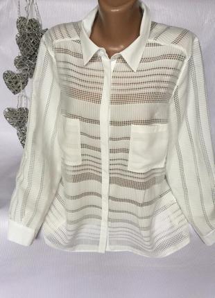 Огромный выбор рубашек и блуз